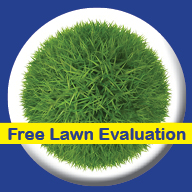 Bio Green of Tacoma Free Lawn Evaluation