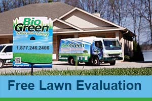 Bio Green Tacoma WA Free Lawn Evaluation