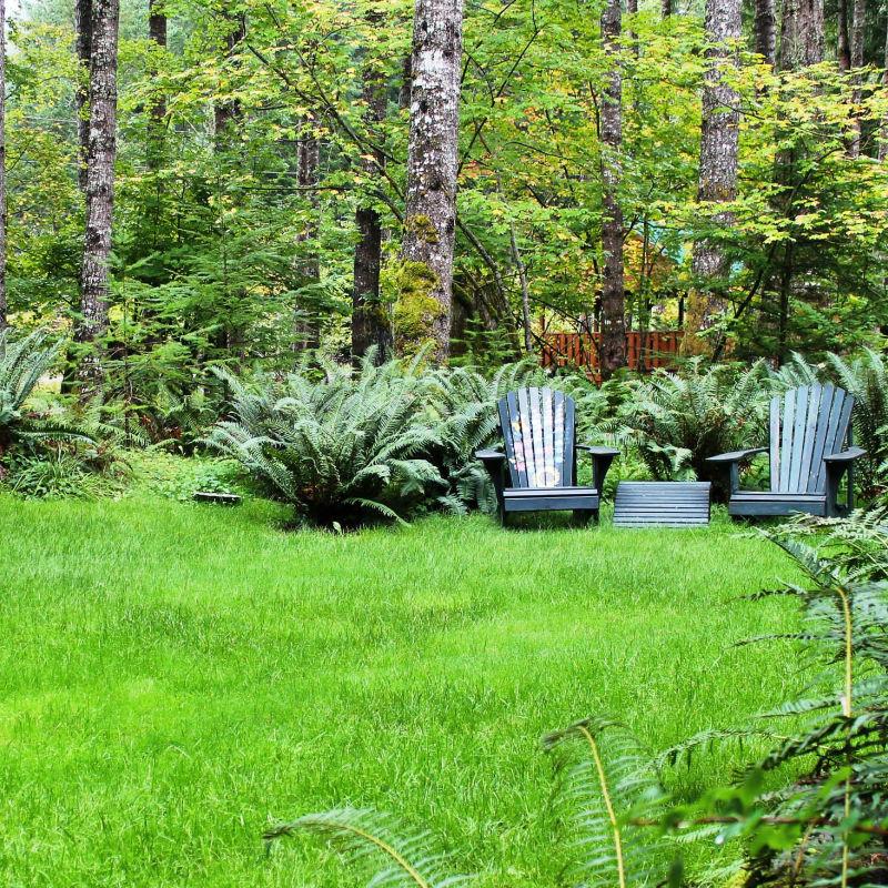 Bio Green Tacoma